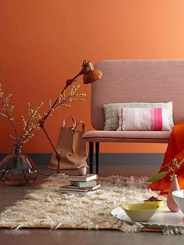 橙色品牌设计